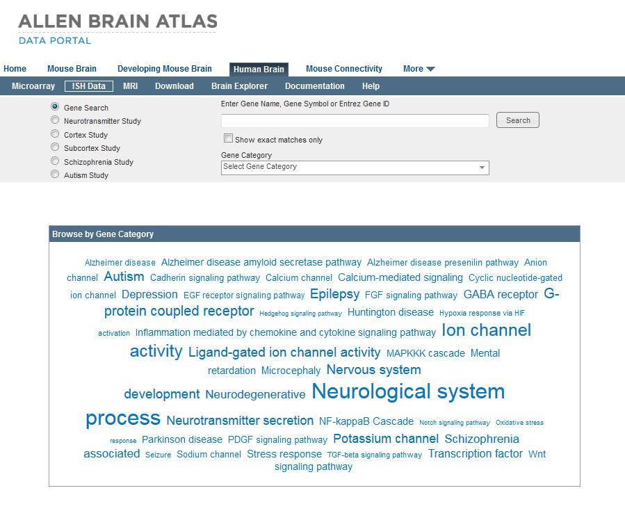 In Situ Hybridization Ish Data Allen Human Brain Atlas